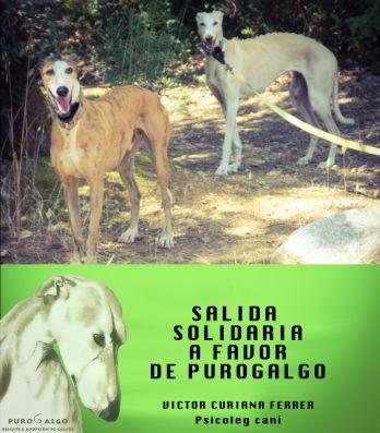 Salida solidaria a favor de la asociación Purogalgo en colaboración con  Victor Ciurana Ferrer 35201dd32a5